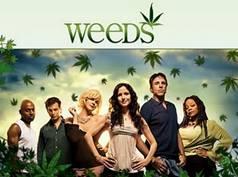 תיאור: http://3.bp.blogspot.com/_3l6JGFNlgCE/TOKFuGlOd5I/AAAAAAAADR4/Ym-8cJ1D-GA/s320/Weeds-Season-7.jpg