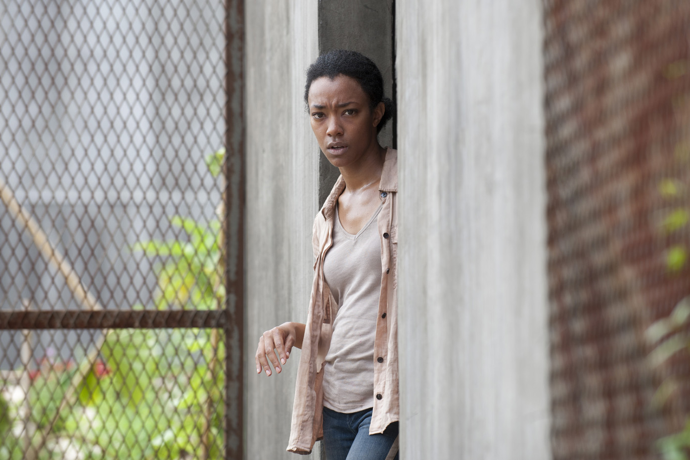 The Walking Dead - 04x03 - Isolation