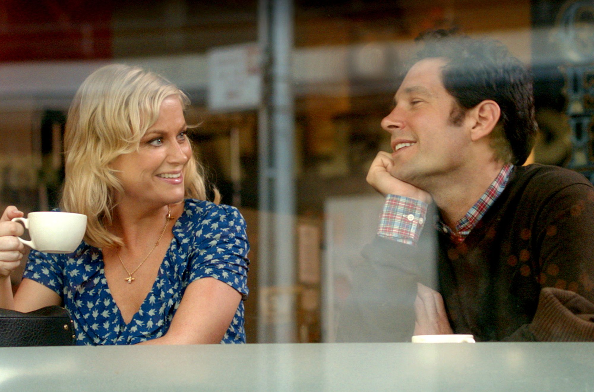they-came-together-amy-poehler-paul-rudd